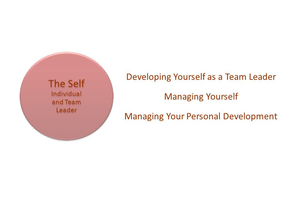 The Self Individual and Team Leader