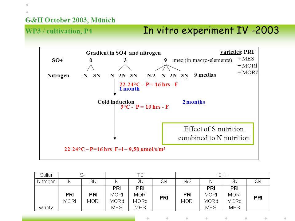 22-24°C – P=16 hrs F+i – 9,50 µmol/s/m²