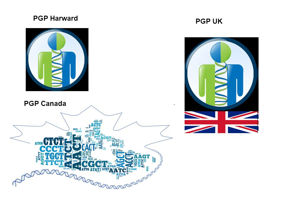 PGP Harward PGP UK PGP Canada