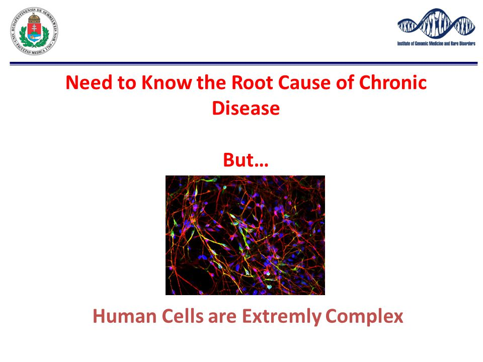 Need to Know the Root Cause of Chronic Disease But…