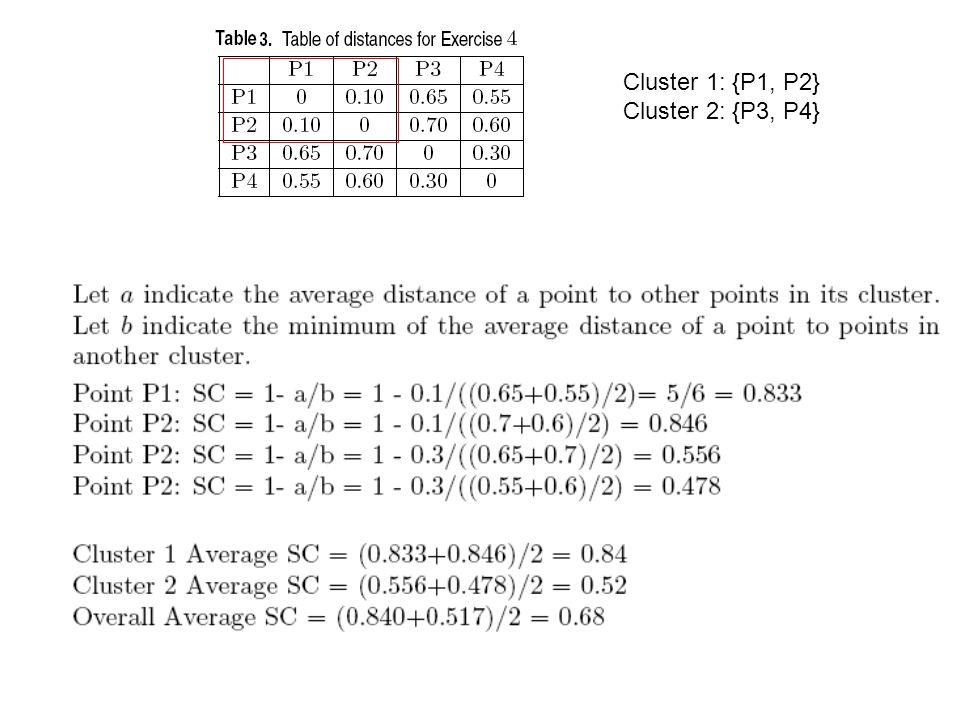 Cluster 1: {P1, P2} Cluster 2: {P3, P4}