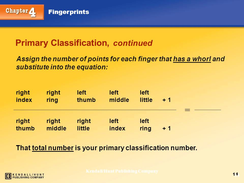 Primary Classification, continued