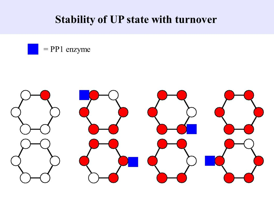 Stability of UP state with turnover