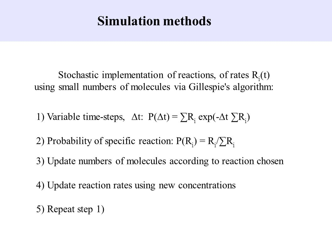 Simulation methods Stochastic implementation of reactions, of rates Ri(t) using small numbers of molecules via Gillespie s algorithm: