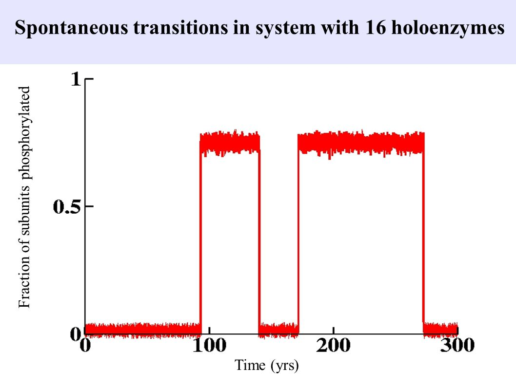 Spontaneous transitions in system with 16 holoenzymes