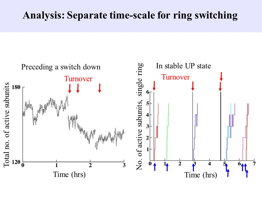Analysis: Separate time-scale for ring switching