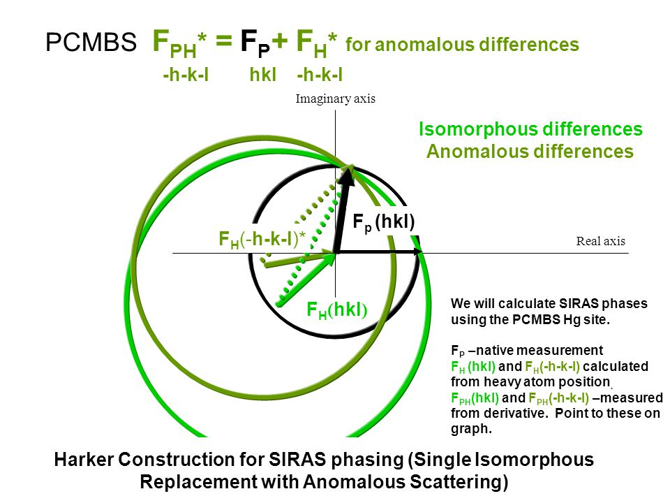 Isomorphous differences Anomalous differences