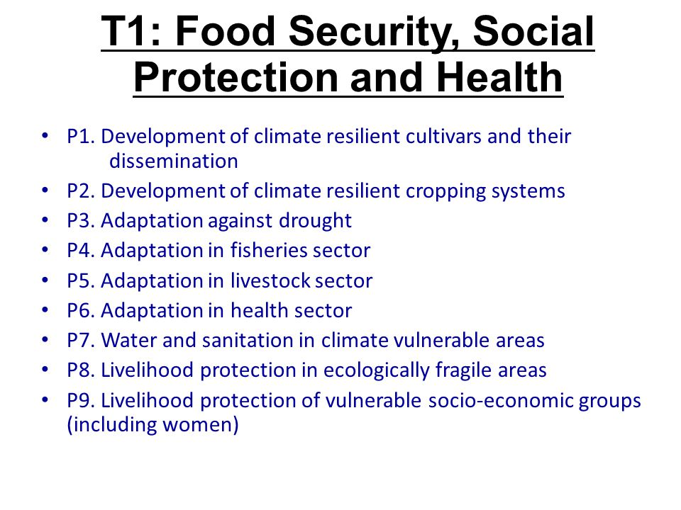 T1: Food Security, Social Protection and Health