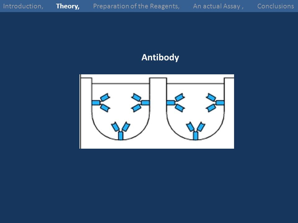 Introduction, Theory, Preparation of the Reagents, An actual Assay , Conclusions
