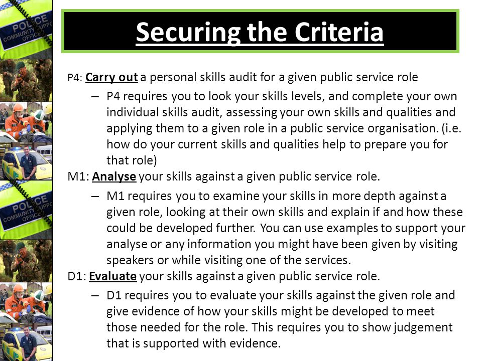 Securing the Criteria P4: Carry out a personal skills audit for a given public service role.