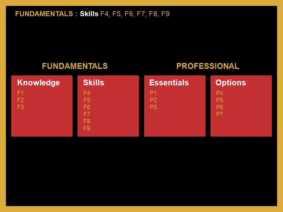 FUNDAMENTALS PROFESSIONAL