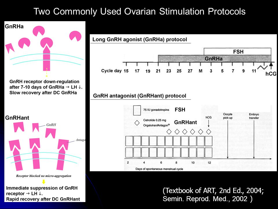 Two Commonly Used Ovarian Stimulation Protocols