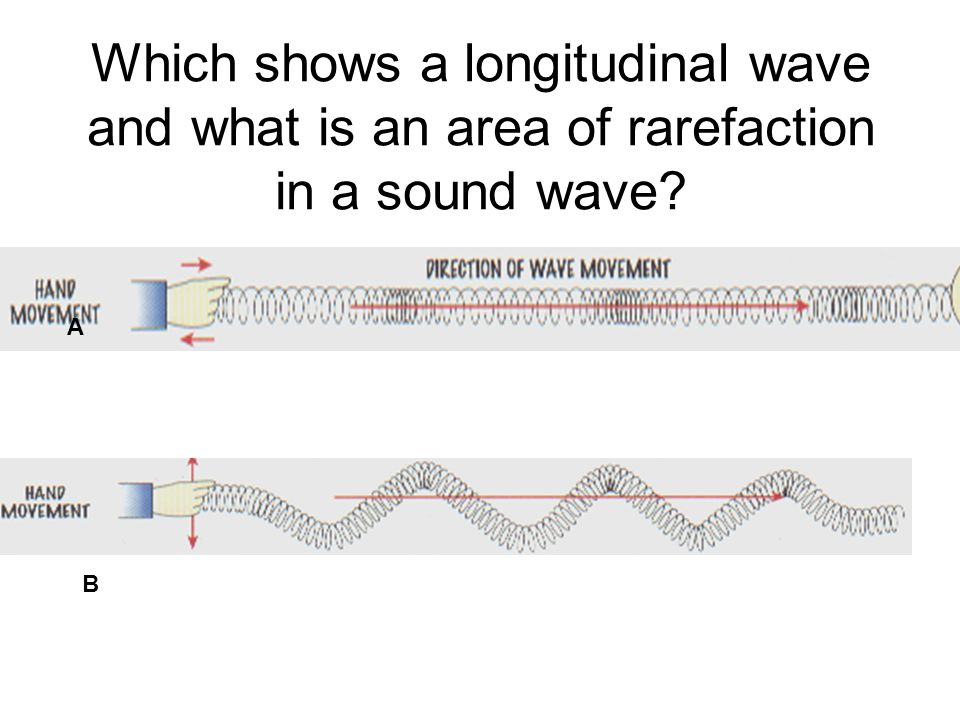 Which shows a longitudinal wave and what is an area of rarefaction in a sound wave