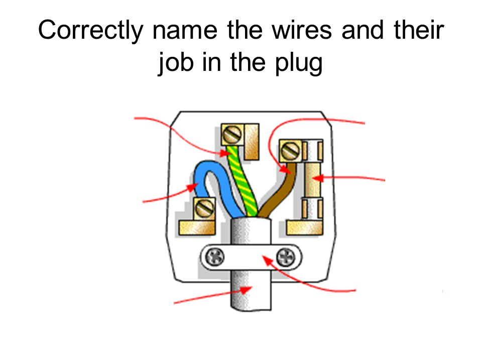 Correctly name the wires and their job in the plug