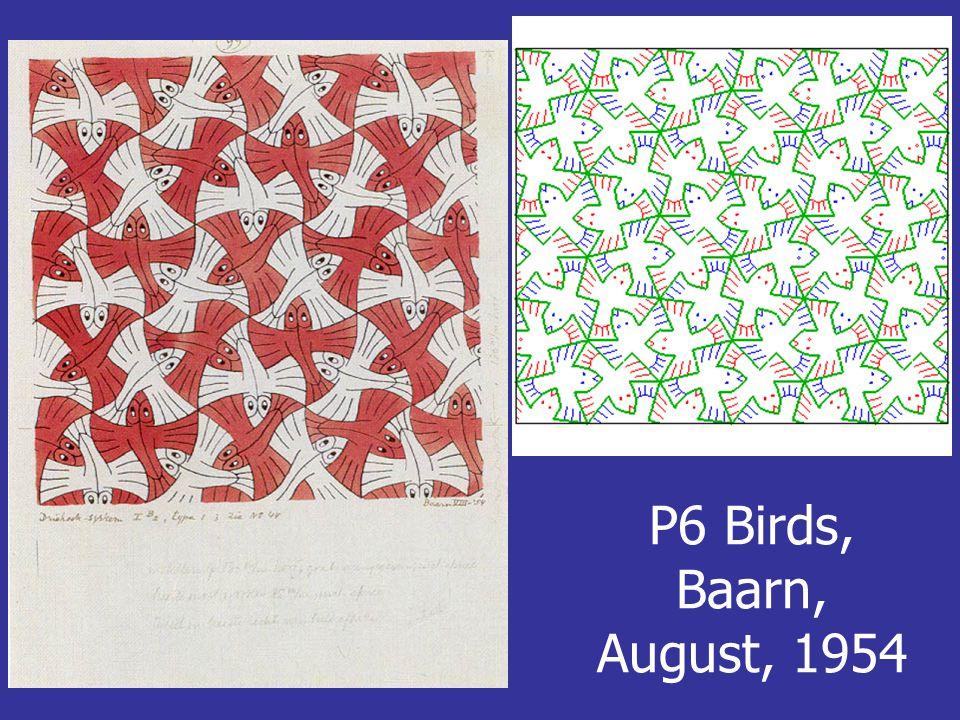 P6 Birds, Baarn, August, 1954