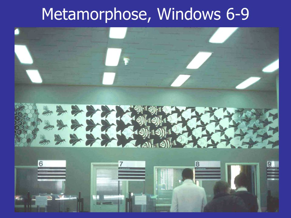 Metamorphose, Windows 6-9