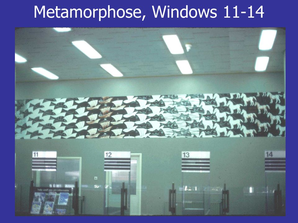 Metamorphose, Windows 11-14