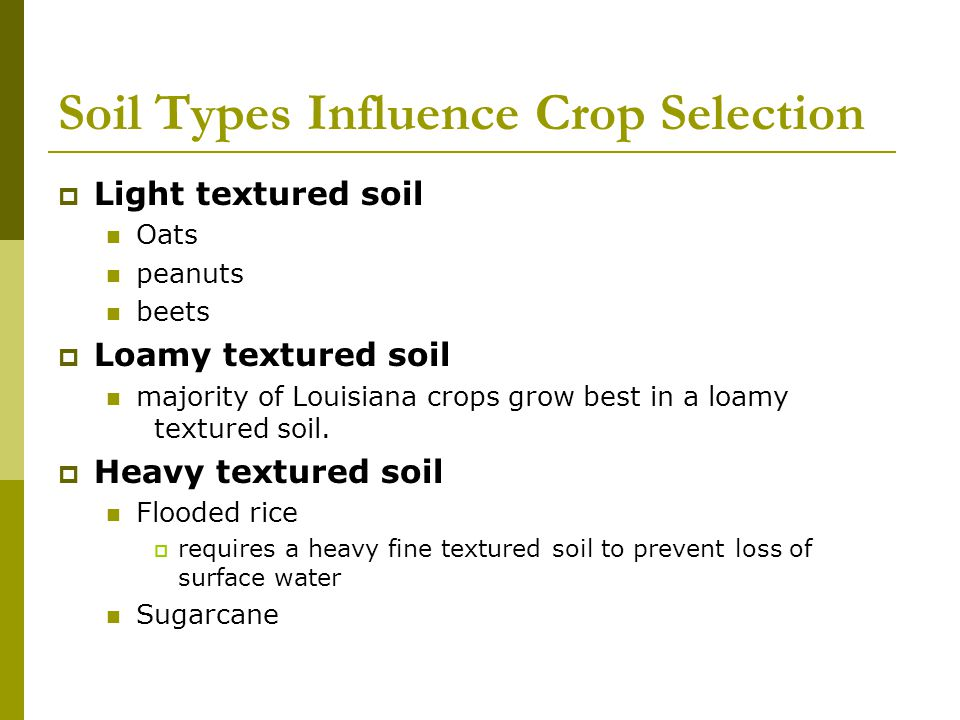 Soil Types Influence Crop Selection