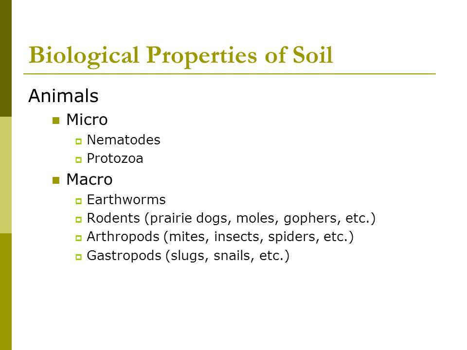 Biological Properties of Soil