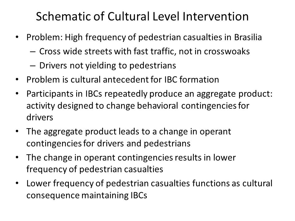 Schematic of Cultural Level Intervention