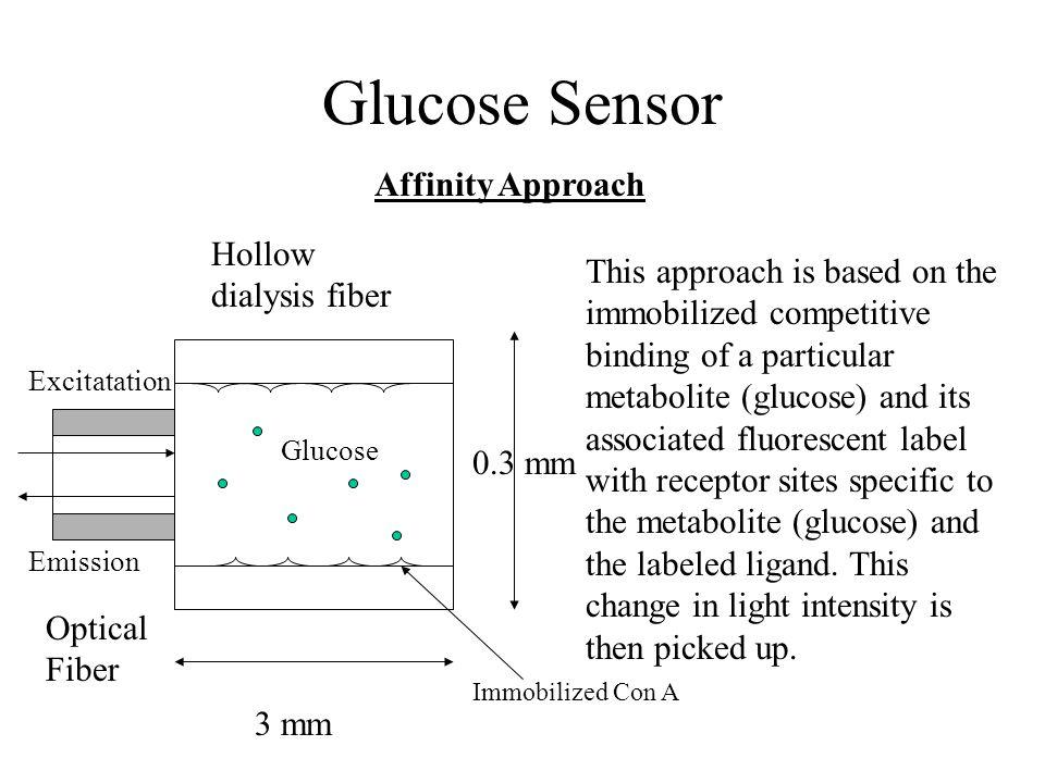 Glucose Sensor Affinity Approach Hollow dialysis fiber
