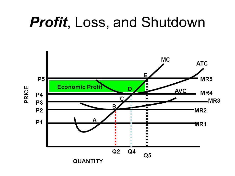 Profit, Loss, and Shutdown