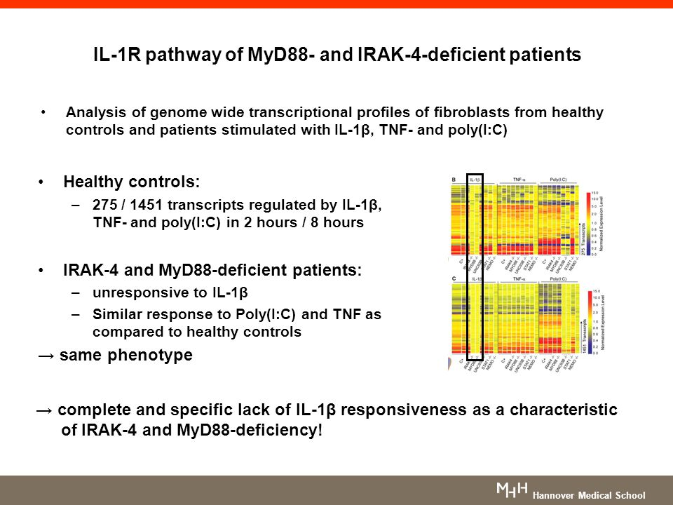 IL-1R pathway of MyD88- and IRAK-4-deficient patients