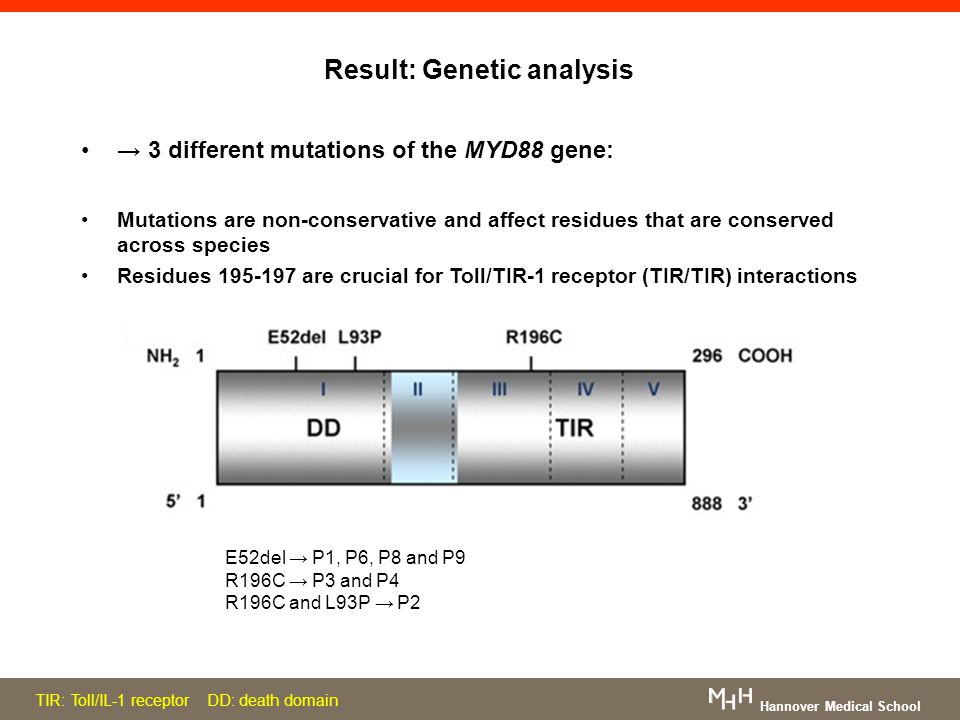 Result: Genetic analysis