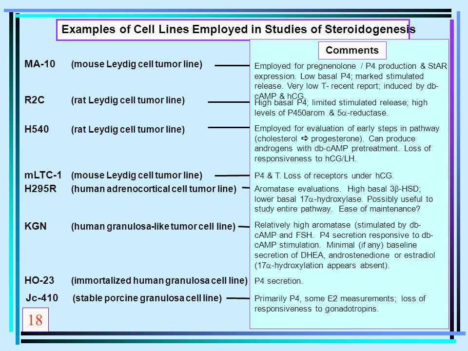 18 Examples of Cell Lines Employed in Studies of Steroidogenesis