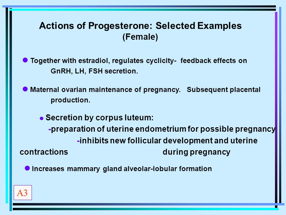 Actions of Progesterone: Selected Examples