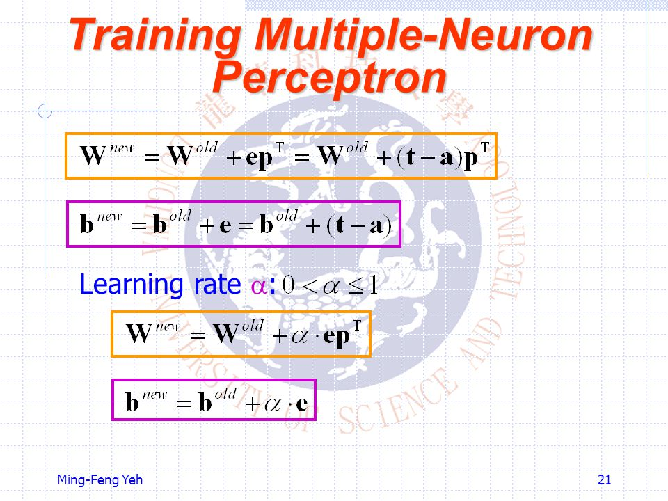Training Multiple-Neuron Perceptron