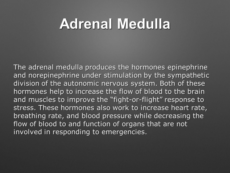 Adrenal Medulla