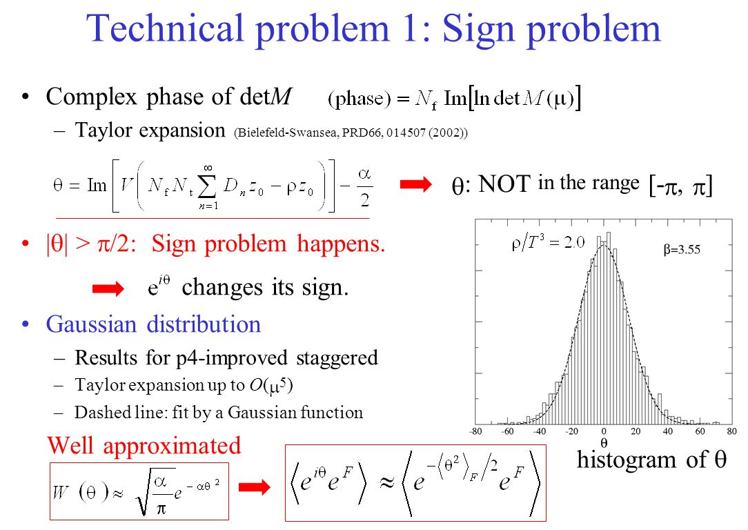 Technical problem 1: Sign problem