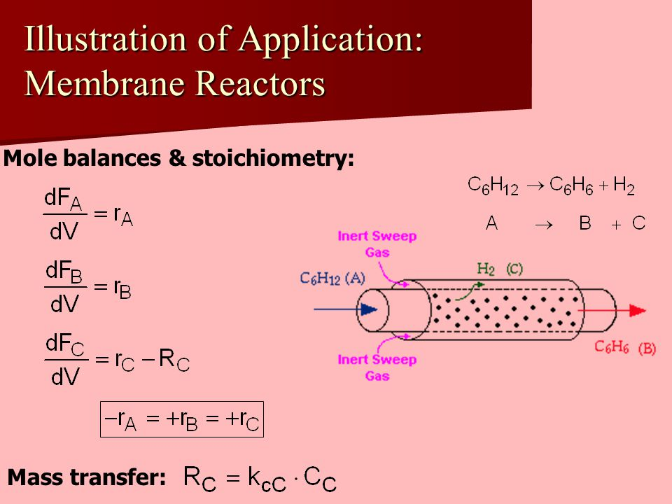 Illustration of Application: Membrane Reactors