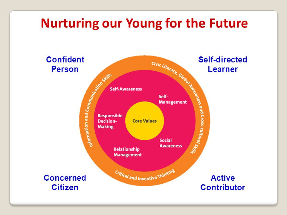 Nurturing our Young for the Future Self-directed Learner