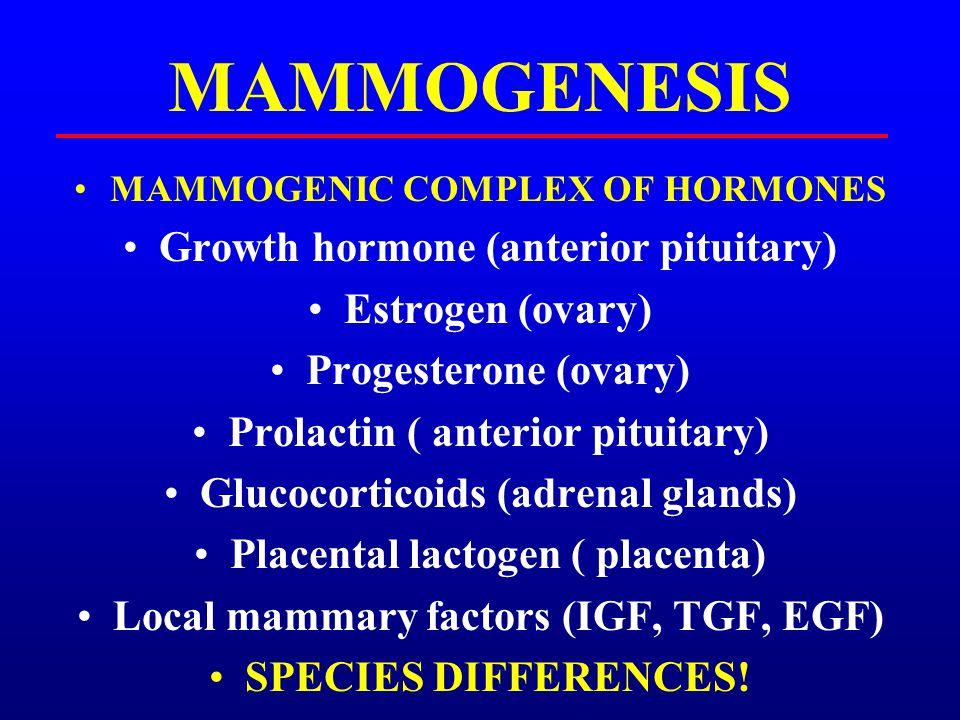 MAMMOGENESIS Growth hormone (anterior pituitary) Estrogen (ovary)