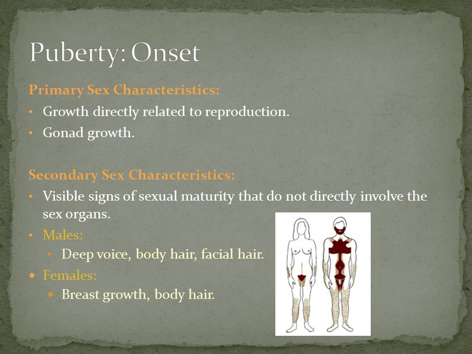 Puberty: Onset Primary Sex Characteristics: