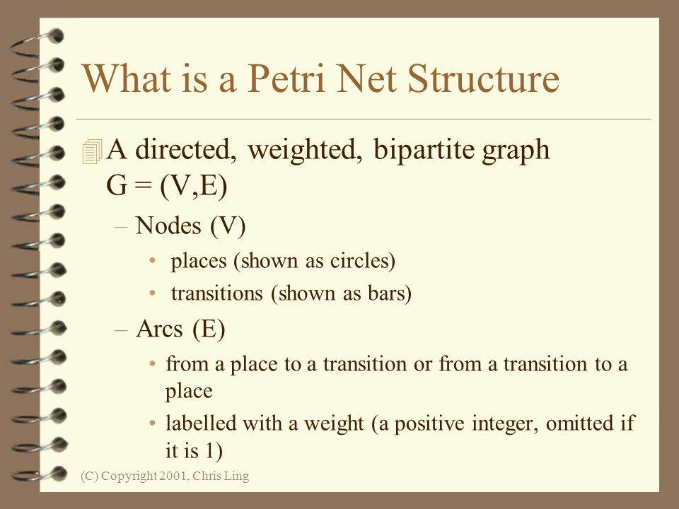 What is a Petri Net Structure