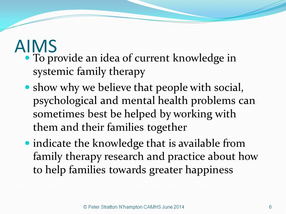 AIMS To provide an idea of current knowledge in systemic family therapy.