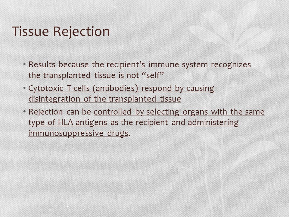 Tissue Rejection Results because the recipient's immune system recognizes the transplanted tissue is not self