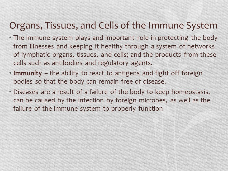 Organs, Tissues, and Cells of the Immune System