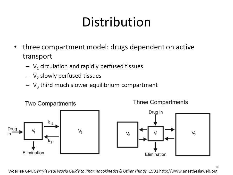 Distribution three compartment model: drugs dependent on active transport. V1 circulation and rapidly perfused tissues.