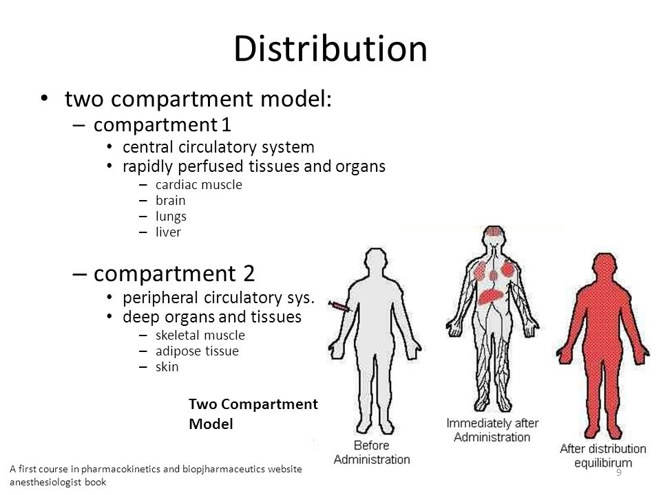 Distribution two compartment model: compartment 2 compartment 1
