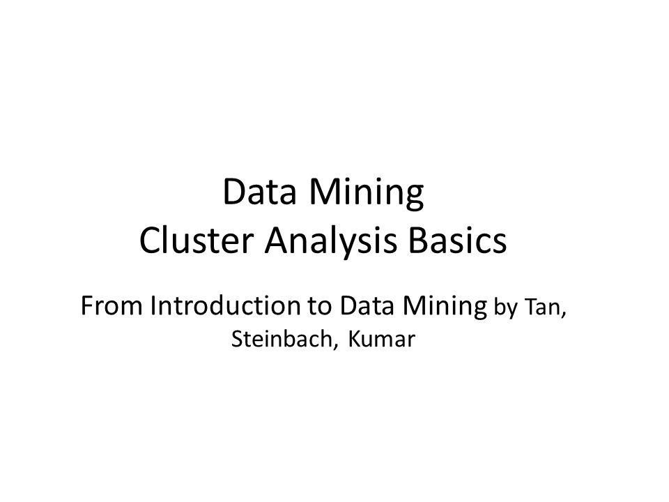Data Mining Cluster Analysis Basics
