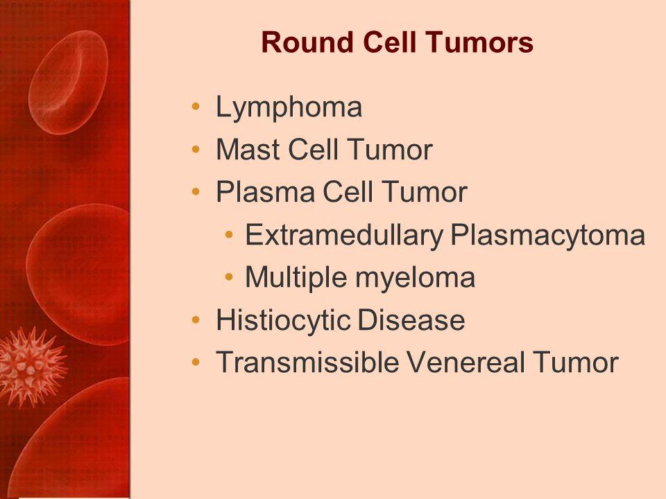 Round Cell Tumors Lymphoma. Mast Cell Tumor. Plasma Cell Tumor. Extramedullary Plasmacytoma. Multiple myeloma.
