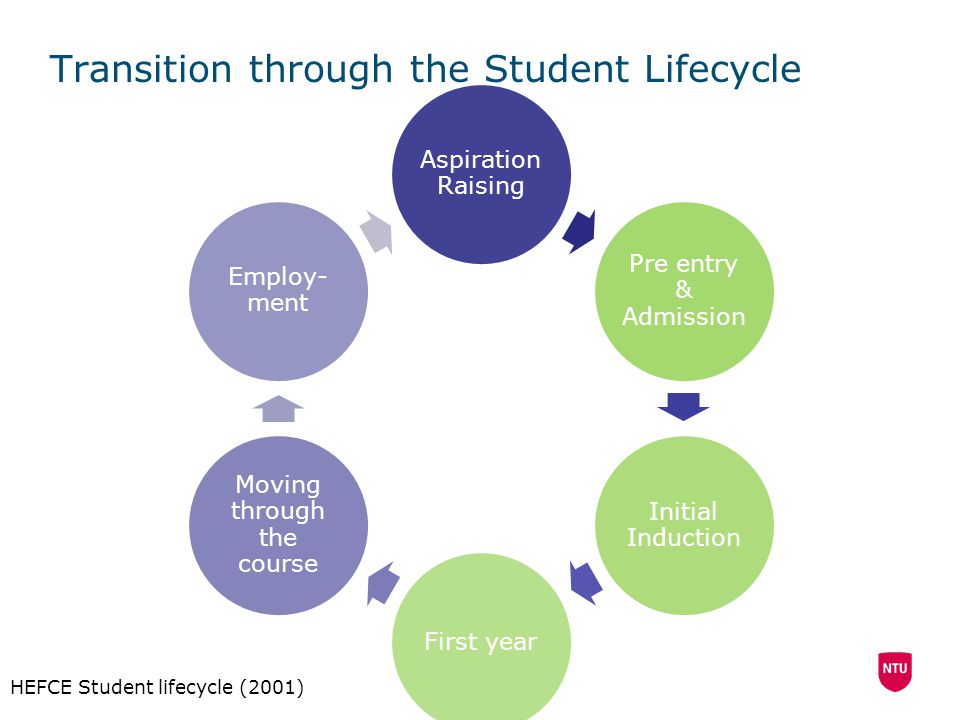 Transition through the Student Lifecycle
