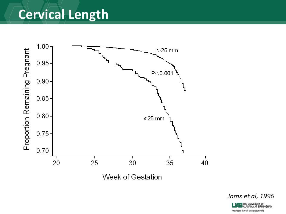 Cervical Length Iams et al, 1996