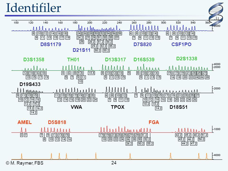 Identifiler D8S1179 D7S820 CSF1PO D21S11 D3S1358 TH01 D13S317 D16S539