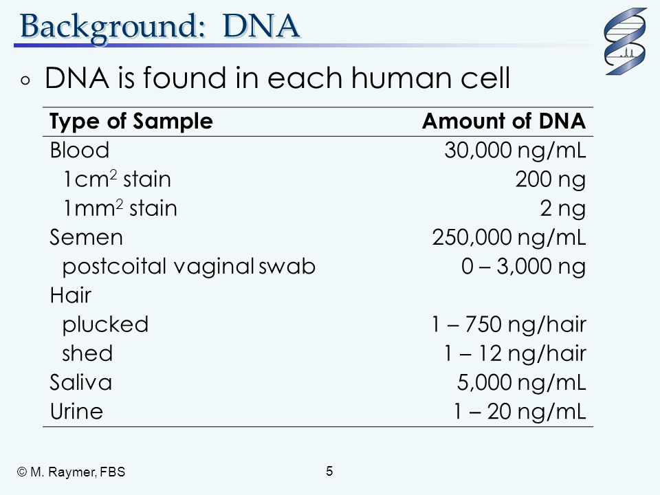 Background: DNA DNA is found in each human cell Type of Sample