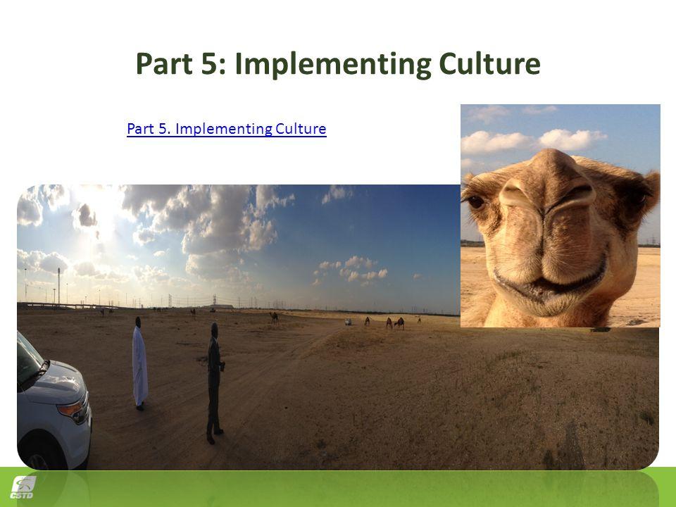 Part 5: Implementing Culture